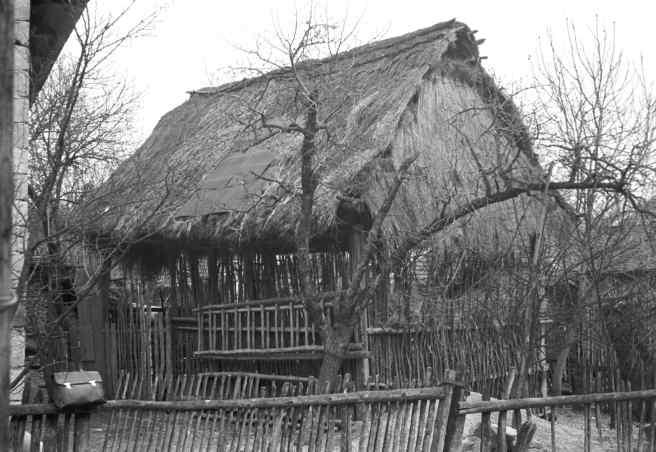 šopa-na-slamu-Mjartan-1959